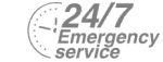 24/7 Emergency Service Pest Control in New Malden, KT3. Call Now! 020 8166 9746