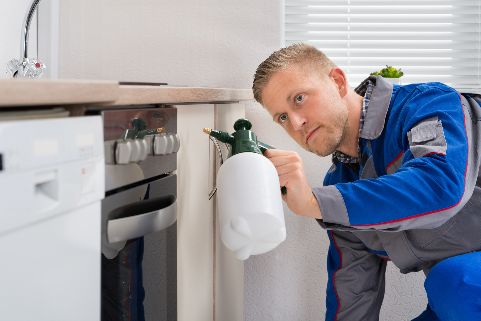 Pest Inspection, Pest Control in New Malden, KT3. Call Now 020 8166 9746